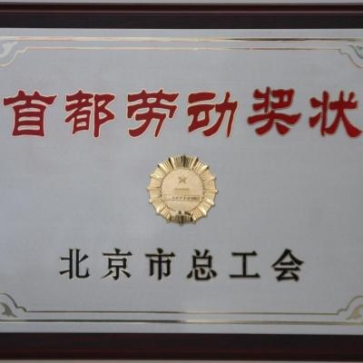北京市总工会颁发首都劳动奖牌