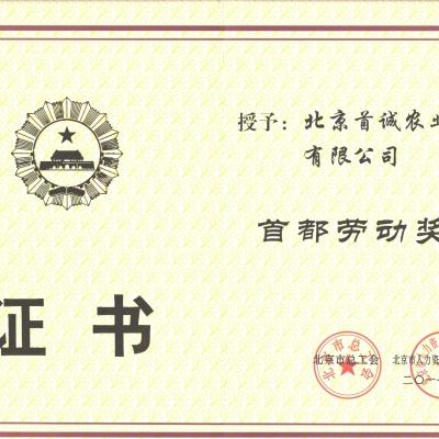 北京市总工会颁发首都劳动奖状证书
